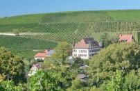 Weindorf an der Badischen Weinstrasse im Markgräflerland,Schwar