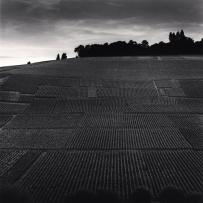 Terrace of Vineyards, Hautvillers, France. 2001