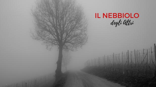 Nebbiolo-lafillossera