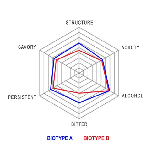 Grillo-biotypes